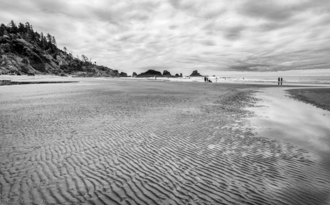 Indian Beach, Ecola State Park Seascape 6